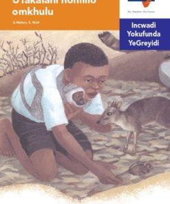 Via Afrika isiNdebele Home Language Intermediate Phase Graded Reader 28 UTakalani nomlilo omkhulu