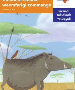 Via Afrika isiNdebele Home Language Intermediate Phase Graded Reader 32 Umndeni omuhle weemfarigi zommango