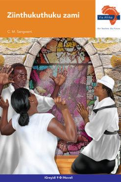 Via Afrika isiNdebele Home Language Grade 9 Novel: Ziinthukuthuku zami