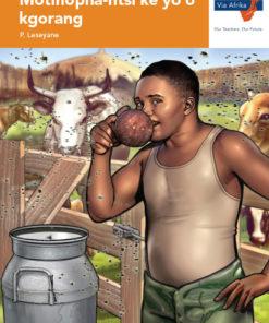 Via Afrika Setswana Home Language Grade 7 Novel: Motlhopha-ntsi ke yo o kgorang