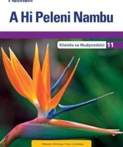 Platinum A Hi Peleni Nambu Giredi 11 Teacher's Guide (CAPS)