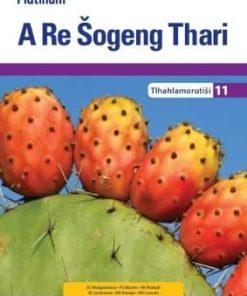 Platinum A Re Šogeng Thari Mphato 11 Teacher's Guide (CAPS)