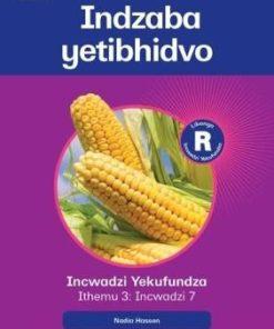 Platinum Libanga R Incwadzi Yekufundza iThemu 3 Incwadzi 7 Indzaba yetibhidvo (Siswati RD)
