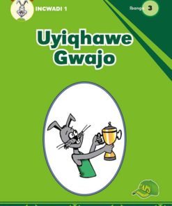 Uyiqhawe Gwajo Incwadi 1 Ibanga 3