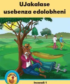 Ukuku Reading Scheme Blue Series: Level 3- Book 1- Ujakalase Usebenza Edolobheni