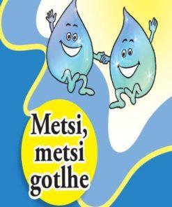 METSI