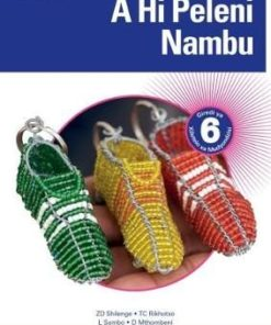 Platinum A Hi Peleni Nambu Grade 6 Teacher's Guide (CAPS)