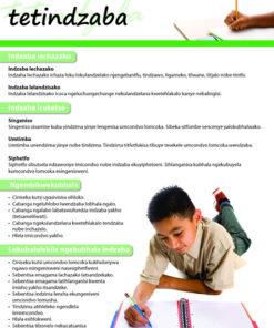 CHART: HOW TO WRITE AN ESSAY (SISWATI) A2 (FLAT)