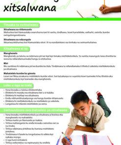 CHART: HOW TO WRITE AN ESSAY (XITSONGA) A2 (FLAT)