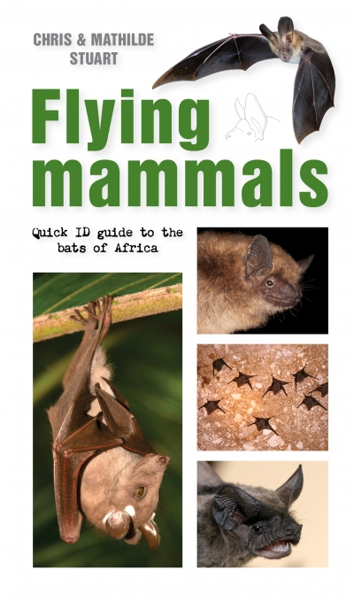 Flying Mammals: Quick ID guide to the bats of Africa