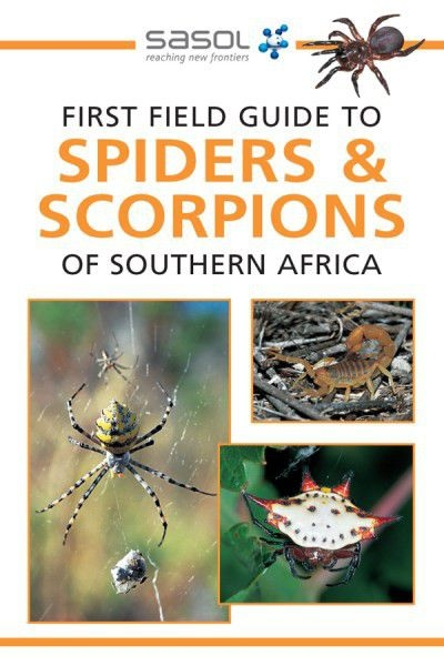 First Field Guide to Spiders & Scorpions of Southern Africa
